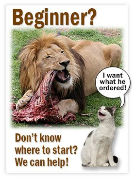 Beginner's Luck    An article with great links to start on feeding your cats a raw diet.