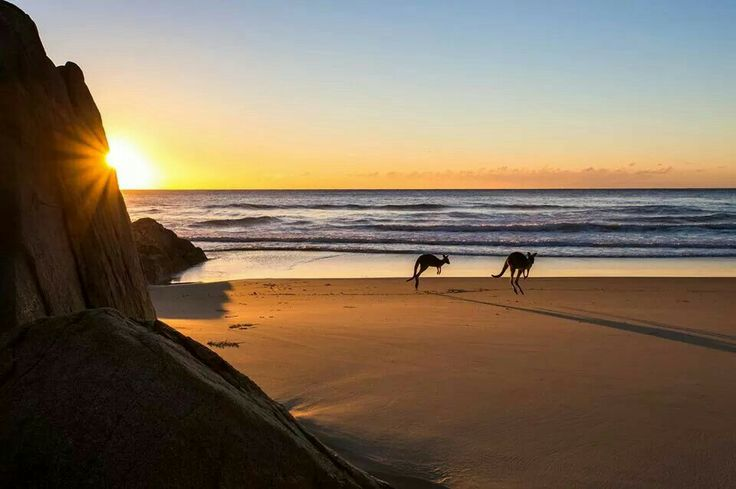 Little Bay, Southwest Rocks, NSW