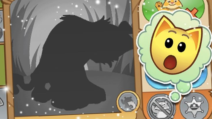ANIMAL JAM: BEST BETA ACCOUNTS!