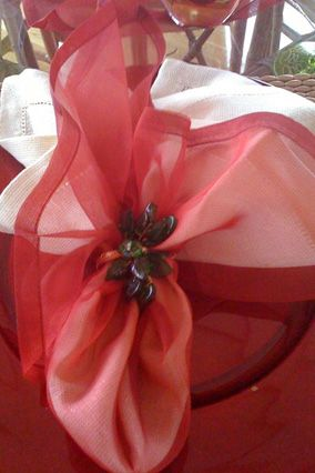 Special Napkin Displays by Cristina Ferrare:   I like to find fun ways to fold napkins. This creation looks like a poinsettia! Experiment with what you have on hand and discover the unique designs you can create.
