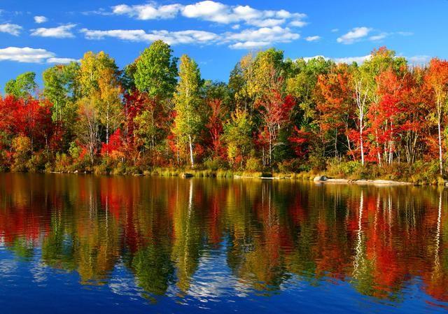 Gorgeous Autumn day.