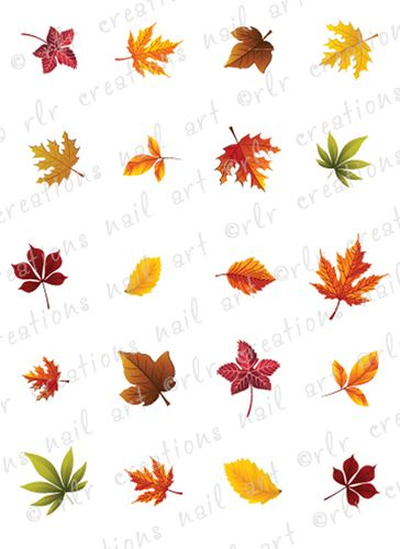 20 Fall Leaves Assortment Water Slide Nail Art Decals Autumn Leaf Nails | eBay
