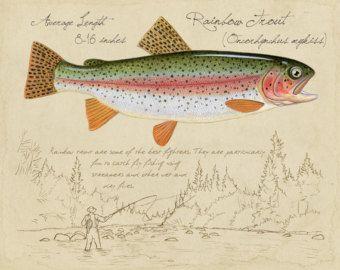 Oltre 25 fantastiche idee su pesca della trota su pinterest for Trota da colorare