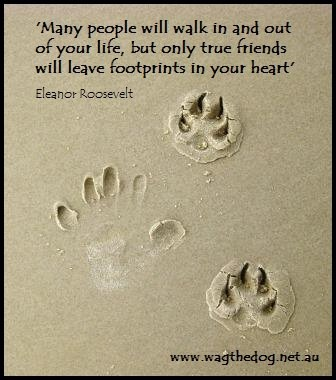 Many people will walk in and out of your life, but only true friends will leave footprints in your heart.  Eleanor Roosevelt
