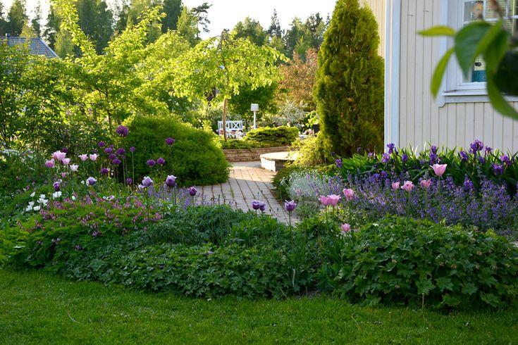 Upeat ukkolaukat / My Garden - Minttua ja mustikoita