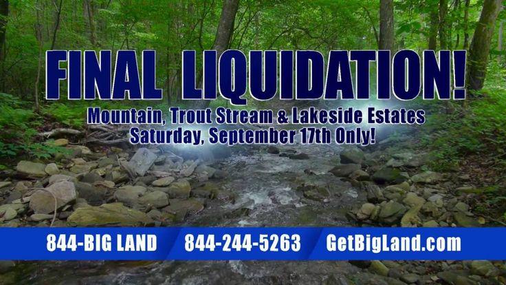 Final Liquidation Sale in Blue Ridge Mountains Georgia