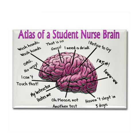nursing student's brain @Lindsey Page: Nur Schools, Student Nursing, Nur Brain, Nursing Student, Funny Stuff, Nursing Schools, Nur Stuff, Nur Student, Student Brain