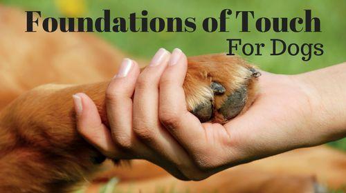 Free online dog massage course.