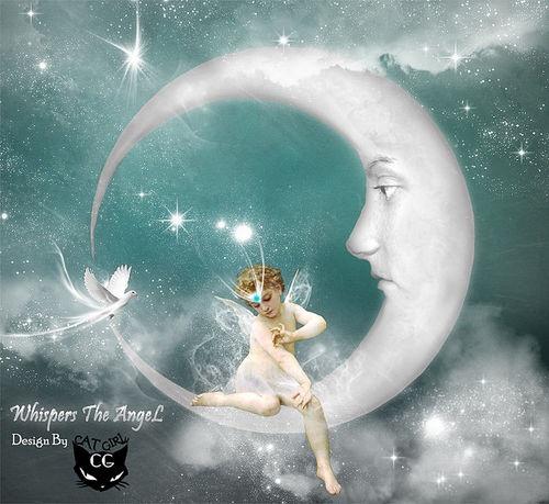 moon & fairy