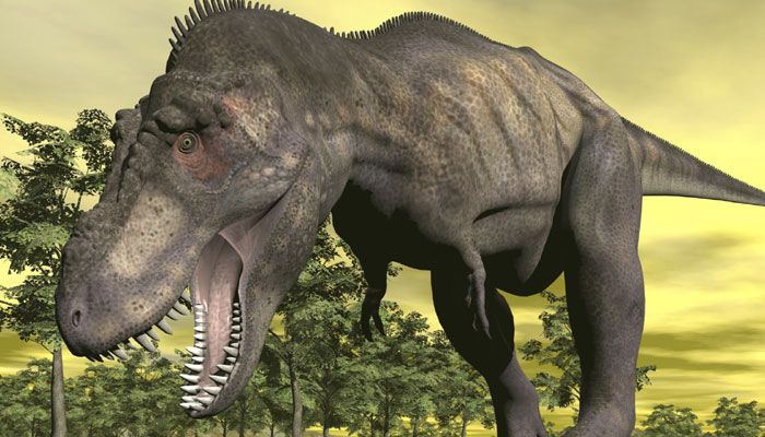 Washington: A new research has revealed that Stegosaurus dinosaurs, who were mostly portrayed as plant eaters, were also lethal fighters and used their spiky tails to fight against their enemies. Paleontologists have uncovered new evidence of a casualty of stegosaurian combat. The evidence was a fatal stab wound in the pubis bone of a predatory allosaur. The wound, in the conical shape of a stegosaur tail spike, would have required great dexterity to inflict and shows clear signs of having…