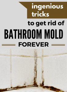 how to clean black mold on bathroom walls