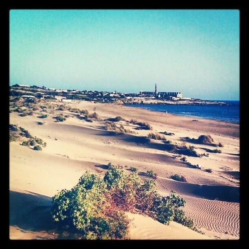 #Scicli: Un po' deserto un po' oasi - #Pisciotto  Instagram: peppe_vas    #sciclidigitale #Italy #Sicily #instagram