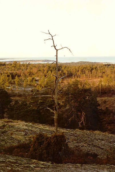 Soltuna in Geta, Northern Åland, Finland.  Photo Västgöten