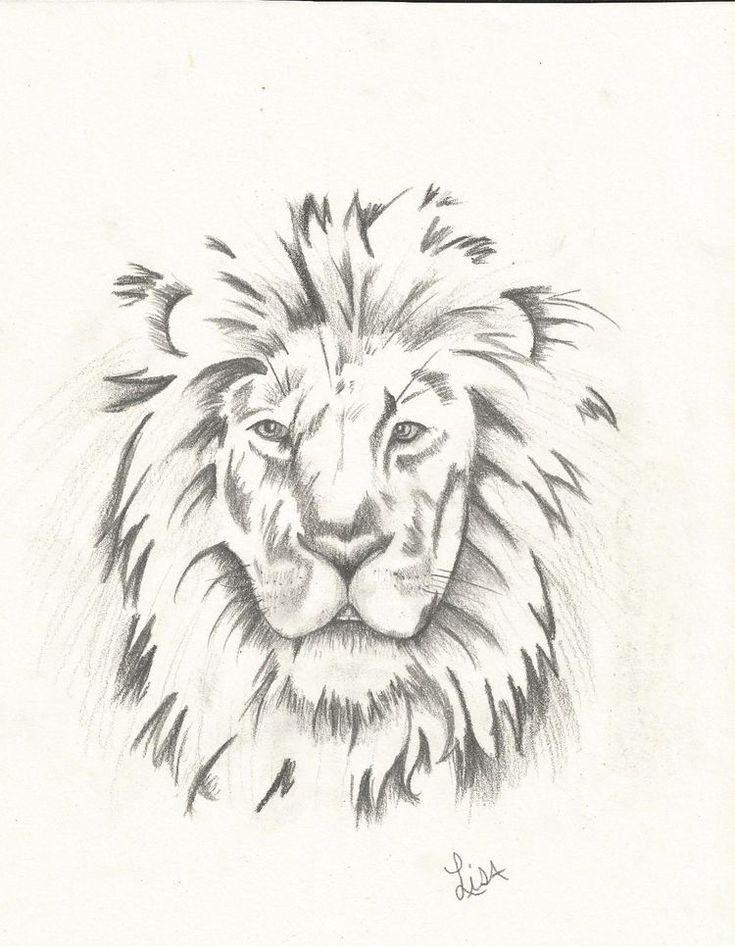 die besten 25  lion head drawing ideen auf pinterest