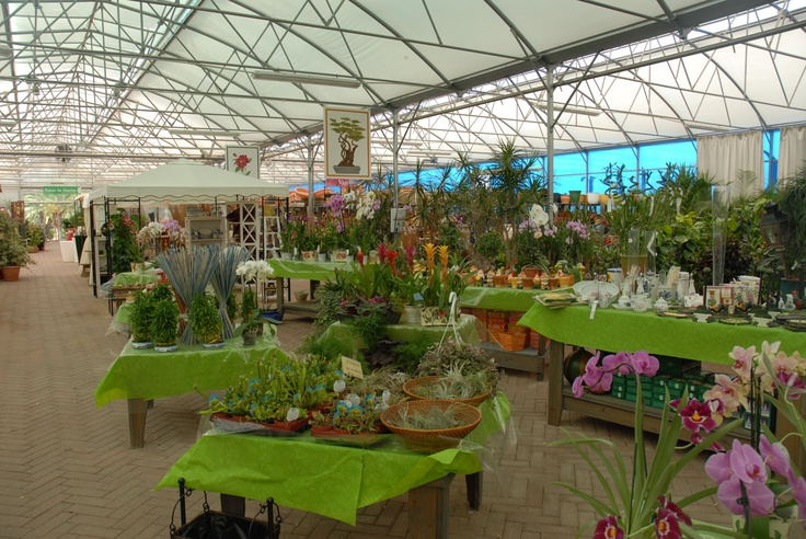 57 best images about garden center displays on pinterest for Idea center dilshad garden