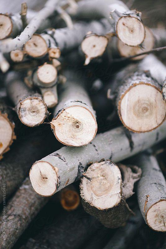 firewood by AlexeyKuzma | Stocksy United
