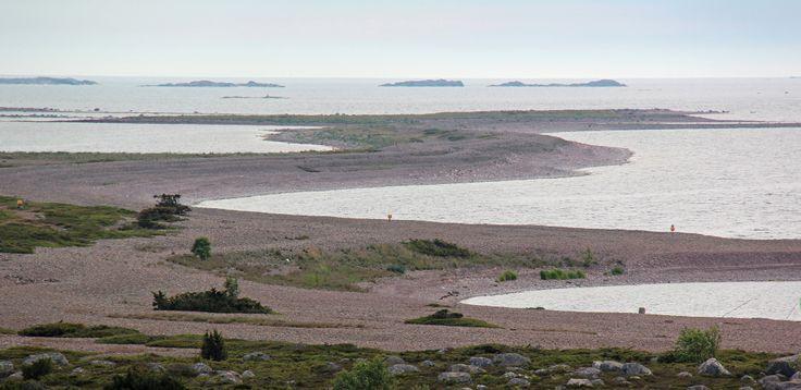 Jurmo South-West dunes 2014