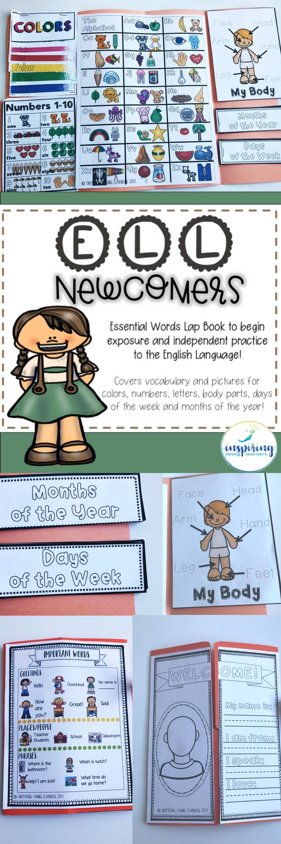 Welcoming Newcomers or Non-English students into your classroom with this Essential Words Lap Book will be a sure way to help them start off on the right foot and feel excited about learning English. This lap book will expose newcomer students to important English vocabulary such as the alphabet, numbers, colors, body parts, days of the week and months of the year.  #ell #esl #ellnewcomers #tesol