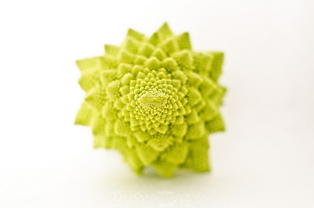Romanesco broccoli's fractal behavior