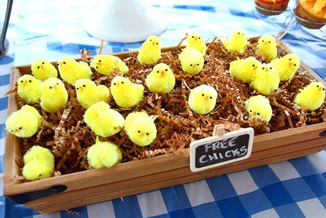 Farm, Barnyard Birthday Party Ideas | Photo 3 of 14 | Catch My Party