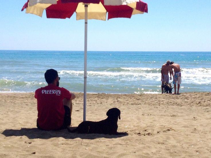 Free Dog Village, la prima spiaggia per cani di Roma