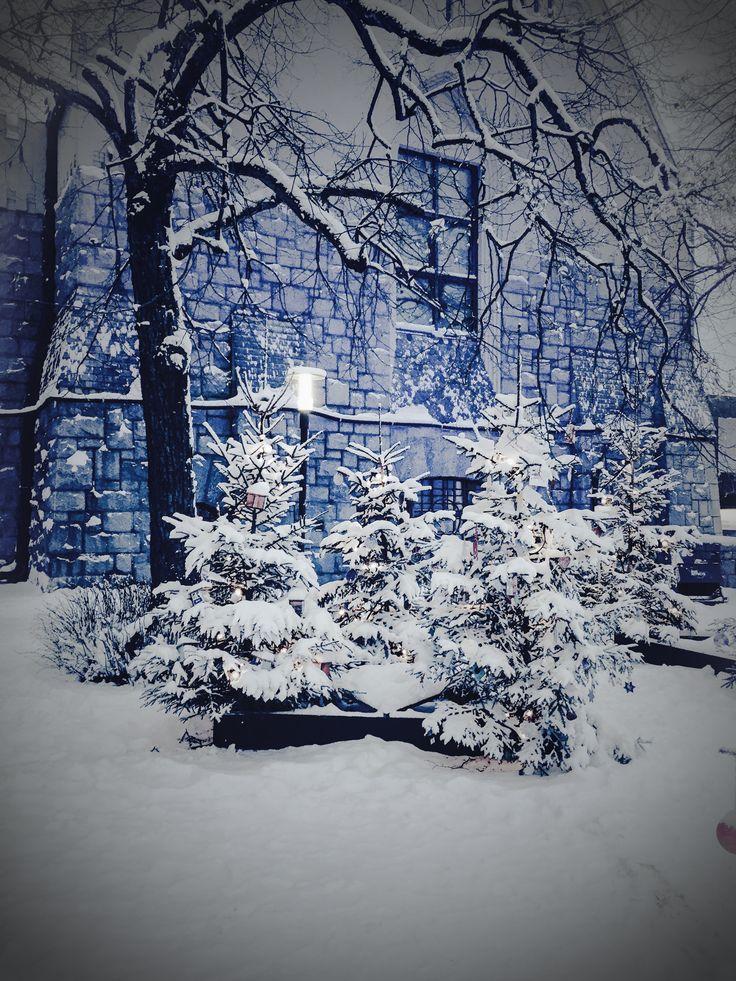 Winter time in Helsinki, Finland 😍