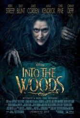 Into The Woods - Una moderna versione delle favole degli amati fratelli Grimm si intreccia con le storie di alcuni individui alle prese con le proprie scelte di vita, desideri e aspirazioni. Seguendo le clas