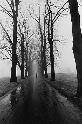 Why wouldn't you want to run in this? Crank up the tunes and hit the pavementJogger Larry, 1979 Artists, Dead Trees, Albert Renger Patzsch, Photography 3, Black White, Larry Silver, Artists Albert, Silver 1979