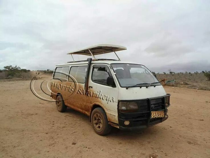 modified #4x4_vehicles specially  for  #photographic_safari