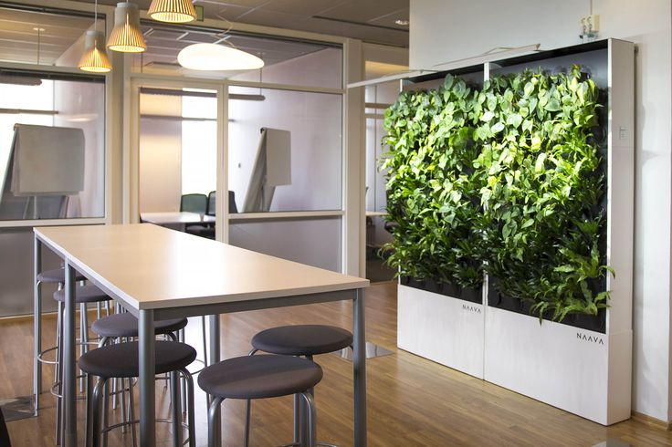 Naava smart green walls at IBM Finland.