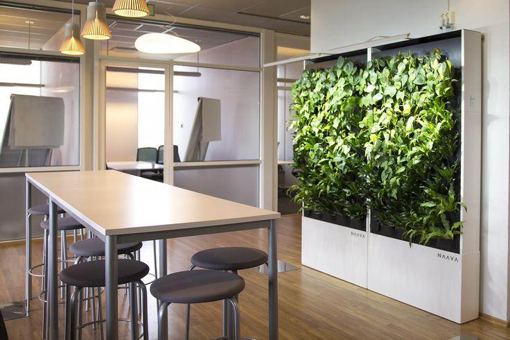 Naava smart green walls at IBM Finland.
