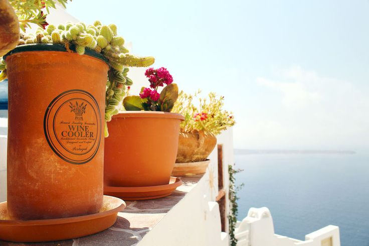 Oia, Santorini, Greece, beautiful house, caldera view, cycladic architecture, holiday deatinations, must see places, cactus