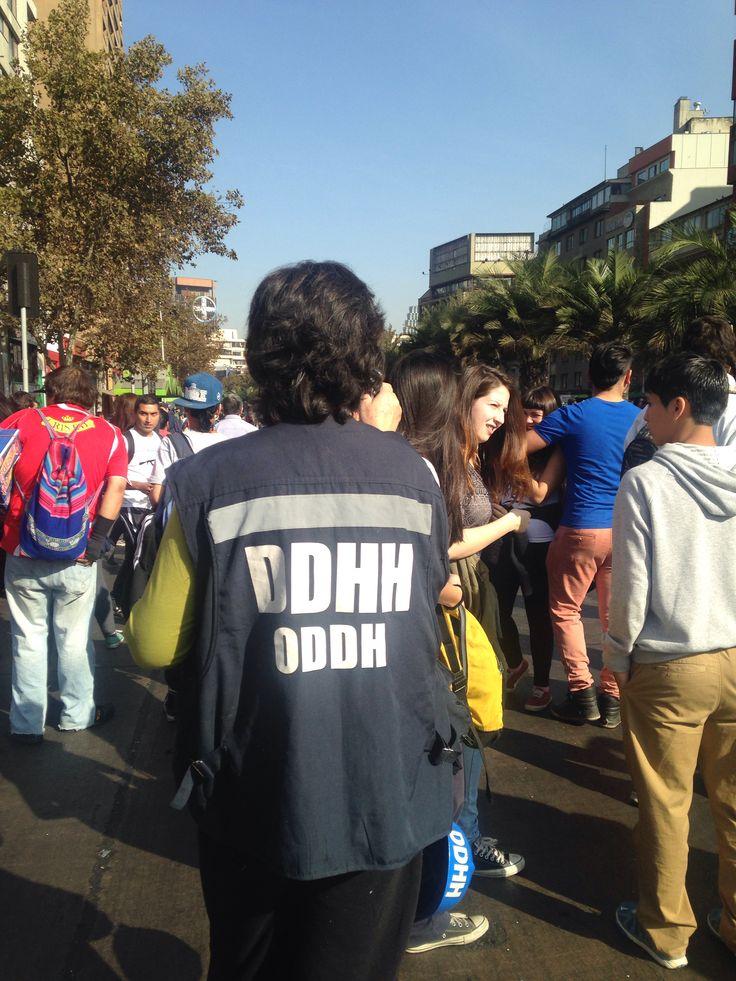 Observadores de DDHH