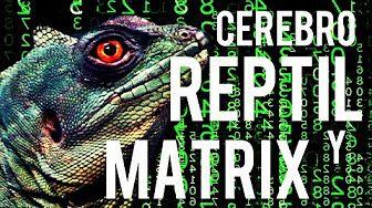 La Verdad: Tu Cerebro Reptiliano Y La Matrix | Alien Truth