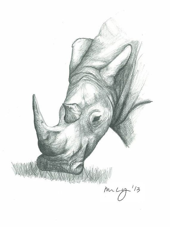 Rhino Illustration all proceeds towards by MegansCozyCreatives, $4.00