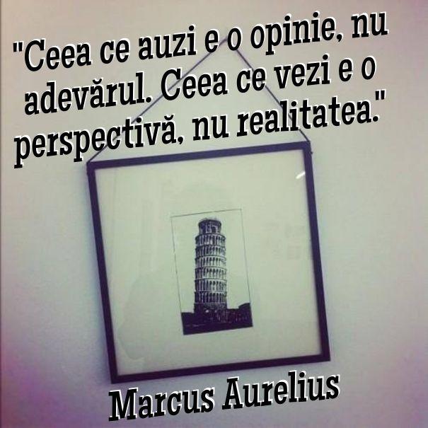 #perspectiva #pisa #citat #opinie #realitate #adevar
