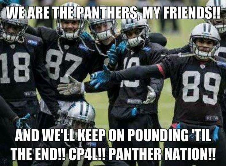 17 Best images about NFL Funnies on Pinterest | Football ... |Panthers Lose Meme