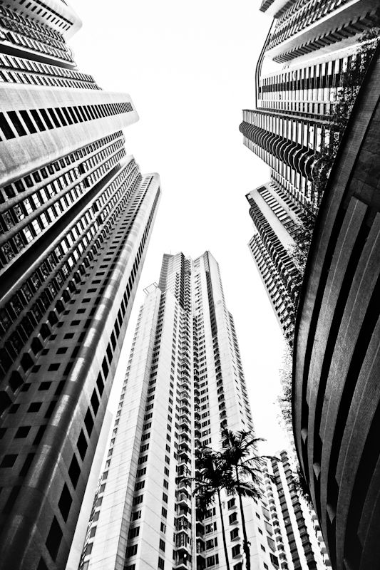 Best Hong Kong Architecture Images On Pinterest Hong Kong - Daredevil duo climb hong kongs buildings capture like youve never seen