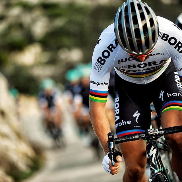 Ready for another year in rainbows Peter Sagan  Photo @veloimages