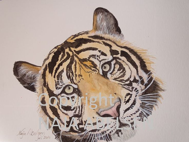 Winnies Tiger. Watercolour by Naja Abelsen for a private customer. Who for years had asked for tiger motives, so this summer we decided to make one for her. 40x30cm.2016 www.najaabelsen.dk