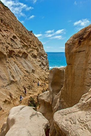 Ho Chi Minh Trail, La Jolla Picture: Just a Peek - Check out TripAdvisor members' 12,750 candid photos and videos of Ho Chi Minh Trail