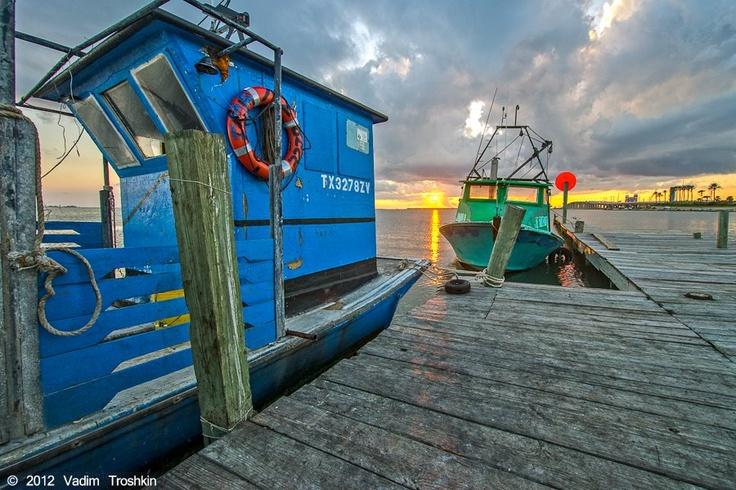 36 best images about gulf coast on pinterest fishing for Galveston fishing party boats