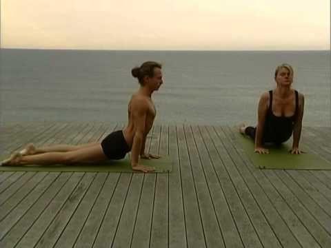 Postures de yoga pour débutants et confirmés.