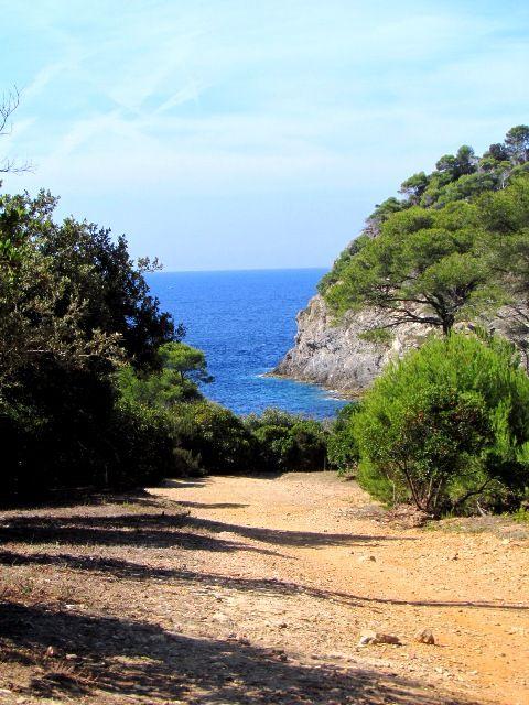 Escape to the Ile de Porquerolles