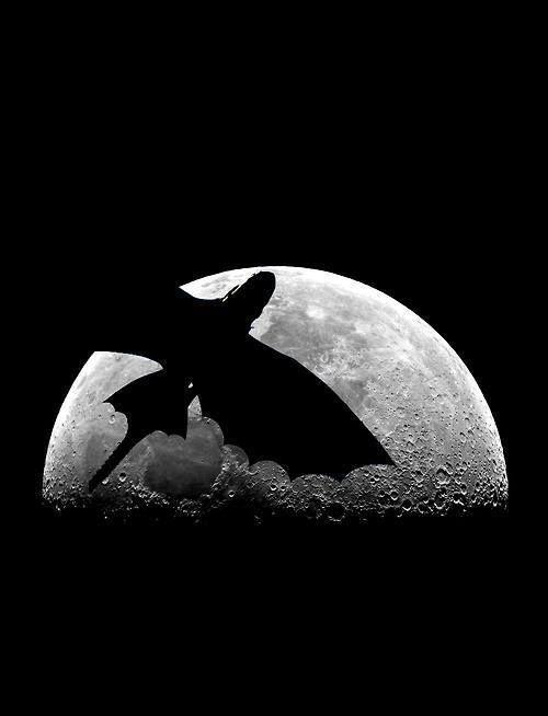 Bezzubka preleta mesic