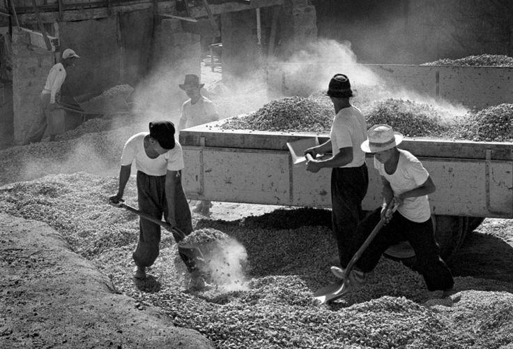 Labourers 1956 Living Theater FAN HO
