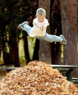 memories...: Leaf Pile, Fall Leaves, Autumn Leaves, Childhood Memories, Writing Prompts, Children, Fun, Kids, Little Boys