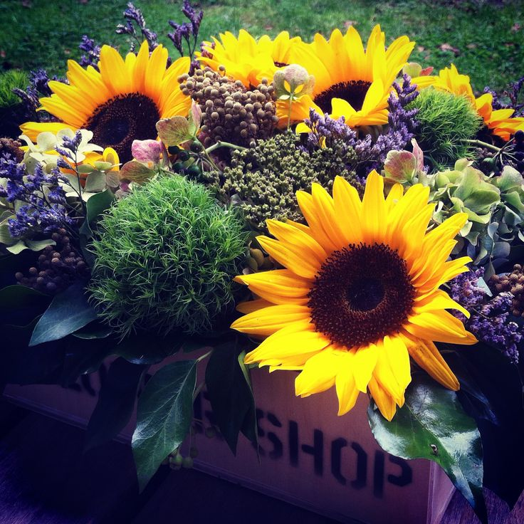 Sunflowers in crate