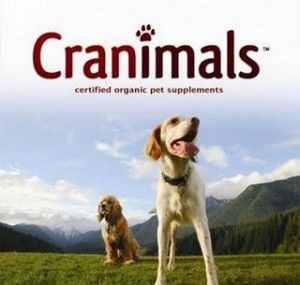 Free Sample of Cranimals