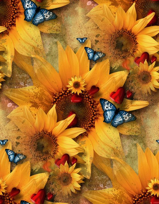 Sun And Nature's Mutual Cosmic Love !... http://about.me ...